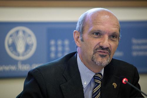 FAO 15 ottobre 2010